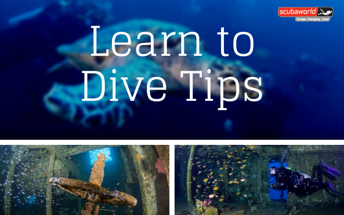 Learn to Dive Tips Every New Diver Should Know