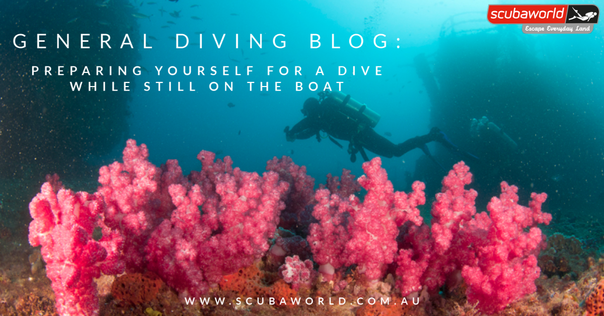 GENERAL DIVING: Preparing yourself for a dive (on the boat)