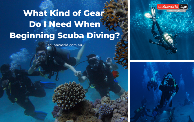 What Kind of Gear Do I Need When Beginning Scuba Diving?